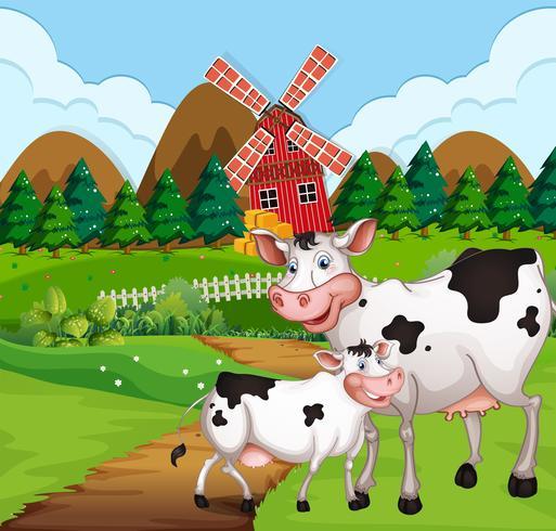 Vache dans les terres agricoles vecteur