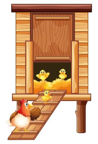 Poulailler avec poule et poussins vecteur