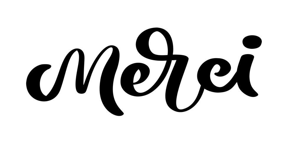Vecteur, lettrage dessiné Merci. Calligraphie manuscrite moderne élégante avec citation reconnaissante en français. Merci à l'encre illustration. Affiche de typographie sur fond blanc. Pour cartes, invitations, impressions, etc. vecteur