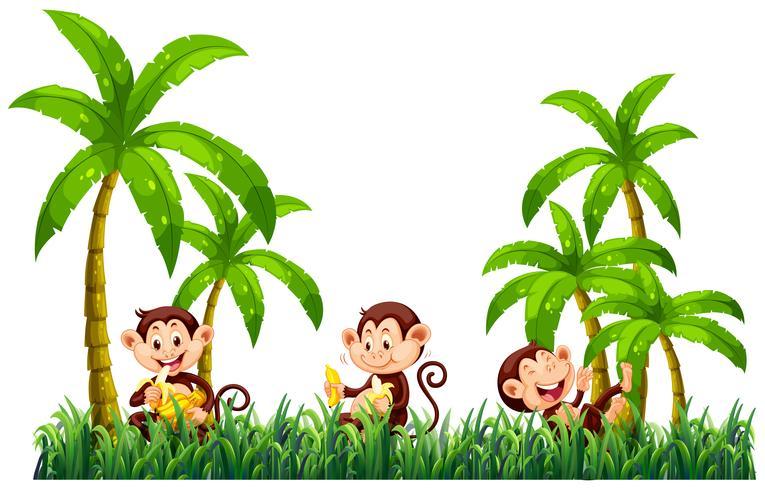 Trois singes mangent des bananes vecteur