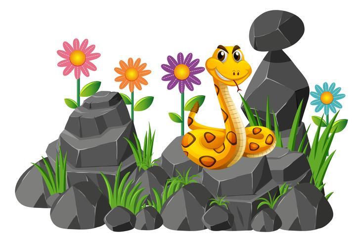 Serpent sauvage sur les rochers vecteur