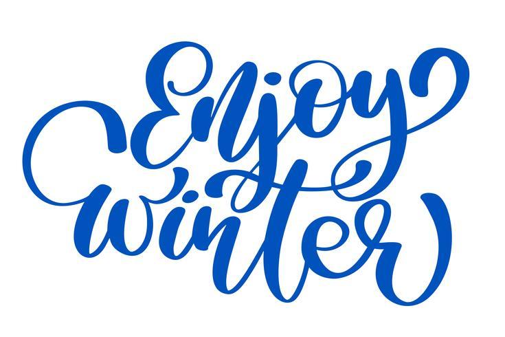 calligraphie profiter Winter Joyeux Noël carte avec. Modèle pour les salutations, félicitations, affiches de pendaison de crémaillère, invitations, superpositions de photos. Illustration vectorielle vecteur