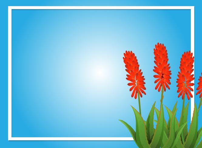 Modèle de bordure avec des fleurs d'aloevera vecteur