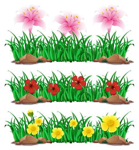 Fleurs dans un buisson vert vecteur