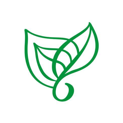 Feuille de thé vert avec logo. Produits d'écologie bio nature élément vecteur icône biologiques. Illustration de dessinés à la main de calligraphie bio Vegan bio