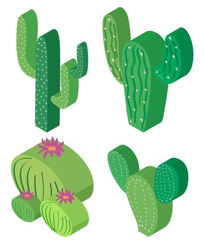 Conception 3D pour plantes de cactus vecteur