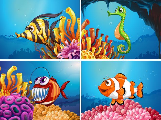 Animaux marins sous la mer vecteur