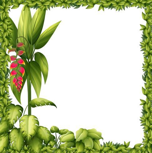 Un cadre vert avec une fleur vecteur
