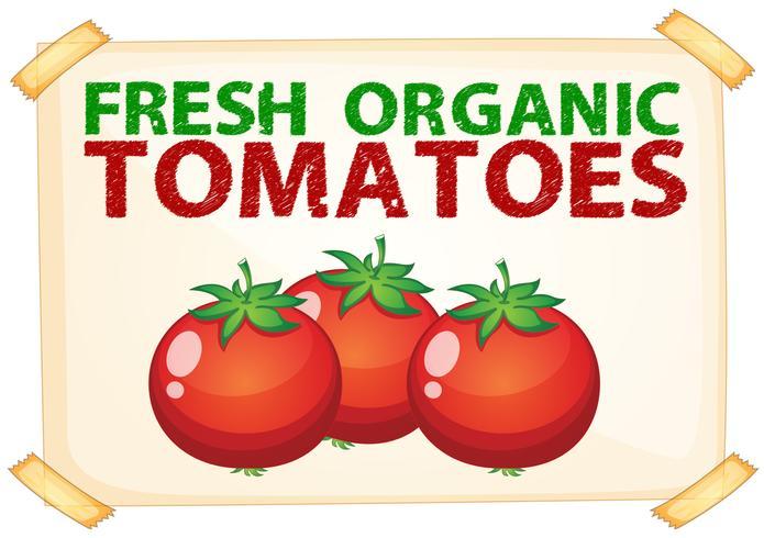 Tomates fraîches vecteur