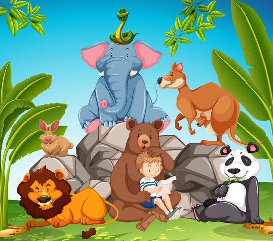 Petit garçon et beaucoup d'animaux sauvages vecteur