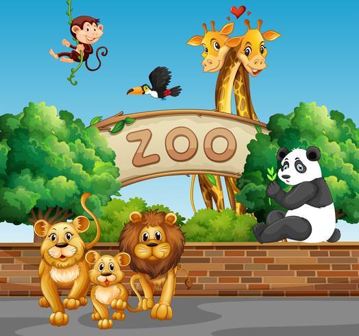 Scène avec des animaux sauvages au zoo vecteur