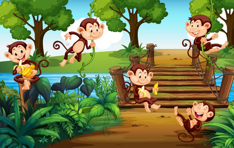 Un groupe de singe au parc vecteur