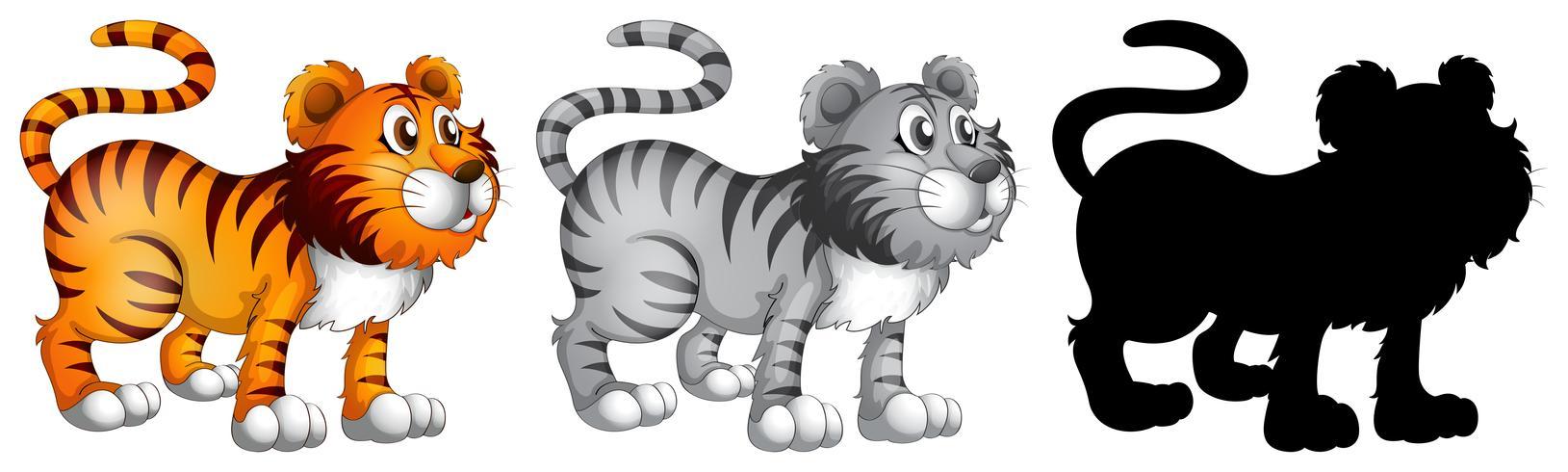 Ensemble de personnage de tigre vecteur