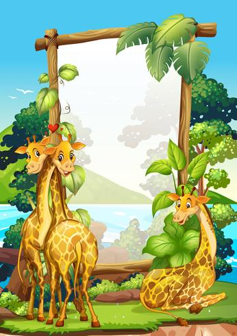 Design de la frontière avec trois girafes dans le parc vecteur