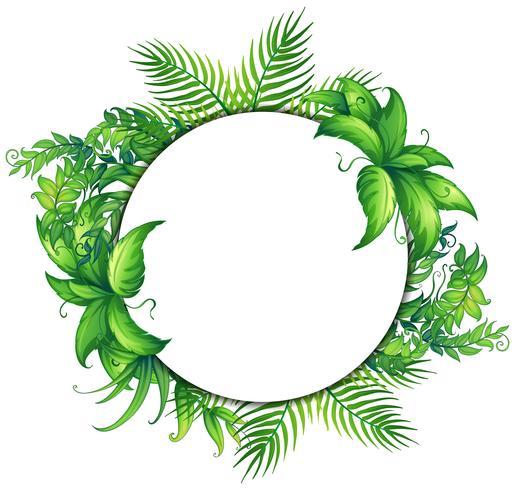 Modèle de bordure avec des feuilles vertes vecteur