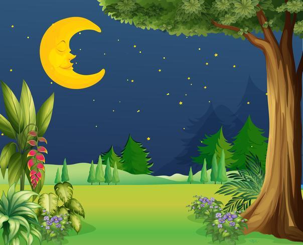 Une demi-lune qui dort vecteur