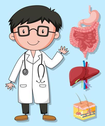 Médecins et organes humains vecteur