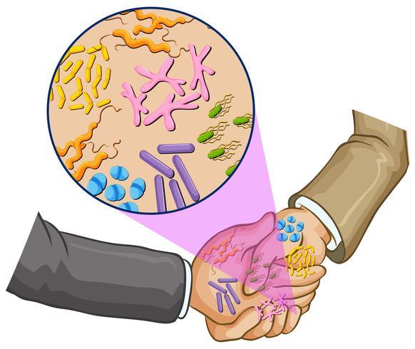 Bactéries en se serrant la main vecteur