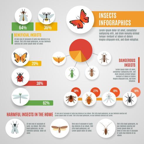Set d'infographie insectes vecteur