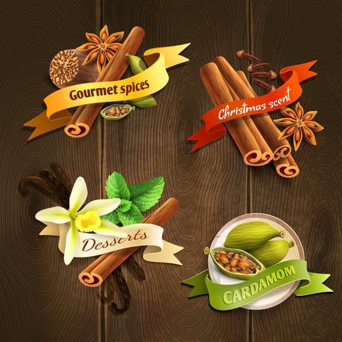 Set de badges d'épices vecteur