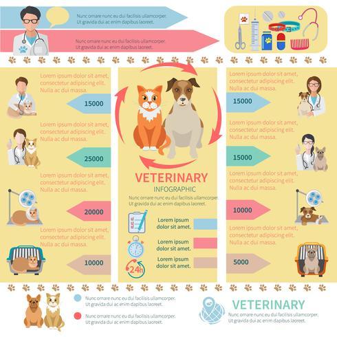 Infographie vétérinaire vecteur