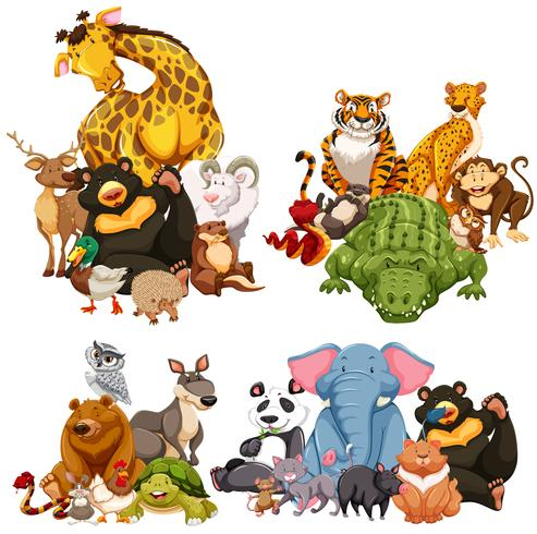 Quatre groupe d'animaux sauvages vecteur