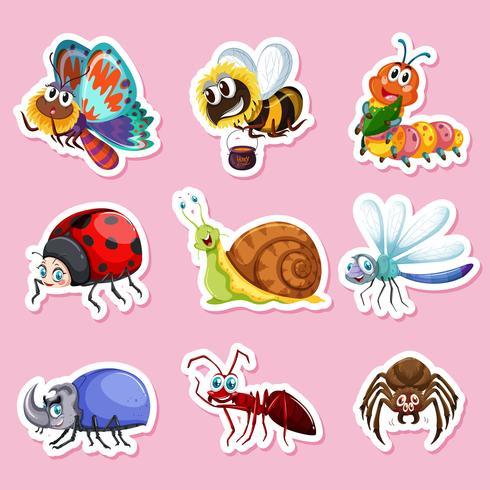Des autocollants pour différents insectes vecteur