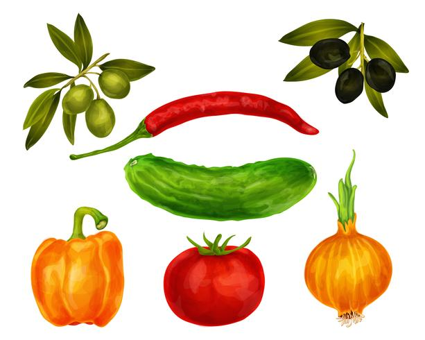 Ensemble isolé de légumes vecteur