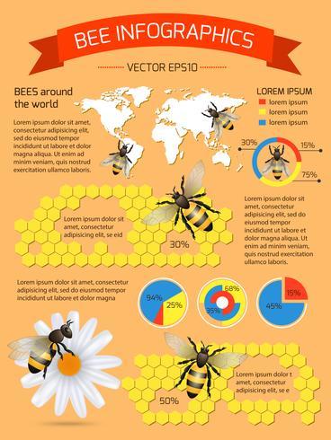 Set infographie abeille vecteur