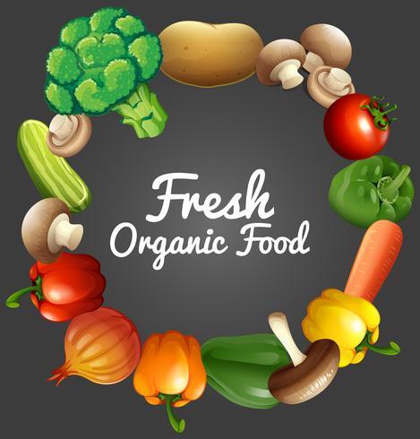 Conception de l'affiche avec des légumes biologiques vecteur