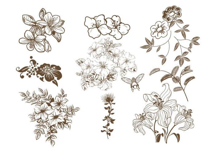 Ensemble vectoriel floral dessiné à la main