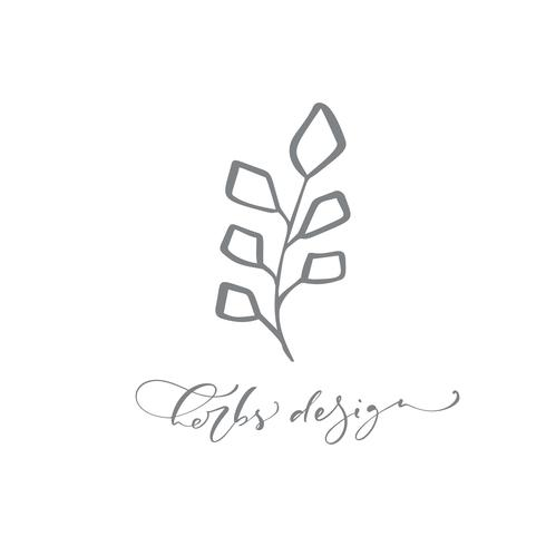 Texte de conception d'herbes. Logo Vector tendance beauté floral dessiné à la main scandinave.