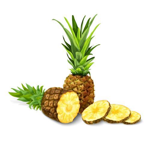 Ananas isolé affiche ou emblème vecteur
