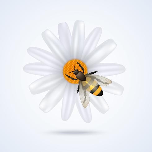Abeille avec fleur vecteur