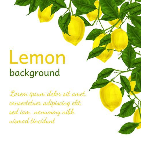 Affiche de fond citron vecteur