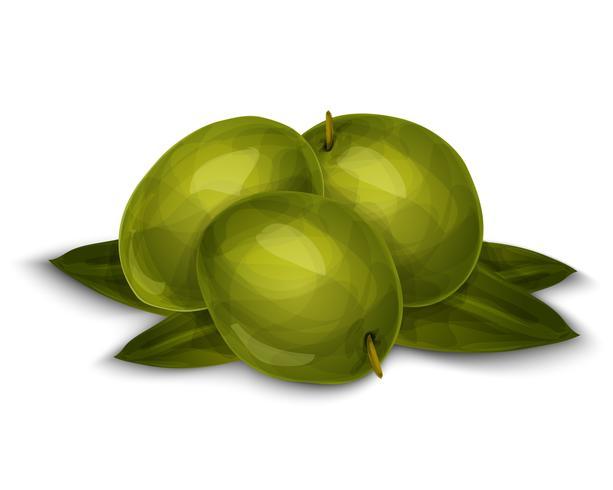 Olives isolées sur blanc vecteur