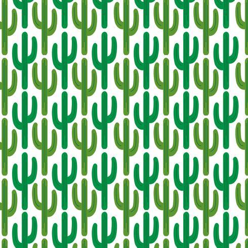 motif de cactus sur fond blanc vecteur
