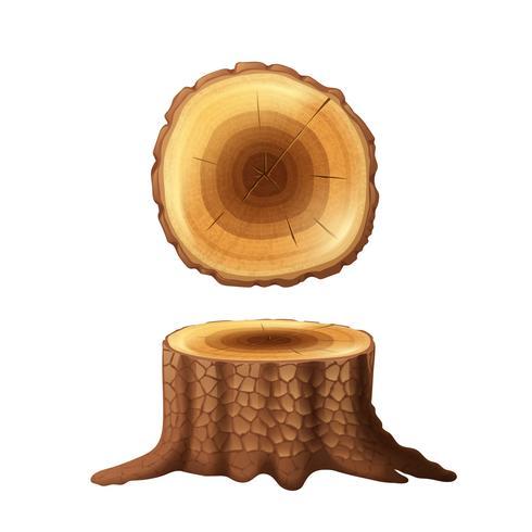 Tronc d'arbre deux vues ensemble d'icônes vecteur