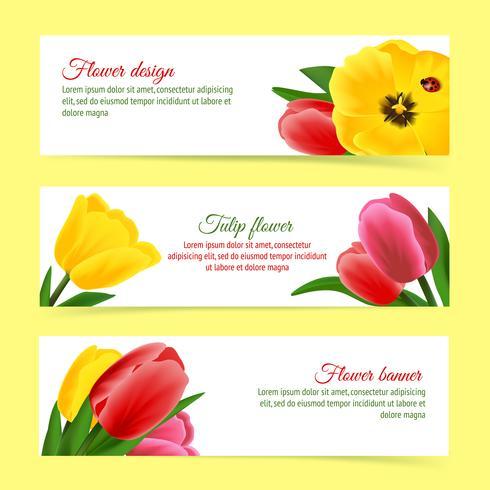 Ensemble de bannière de tulipe vecteur