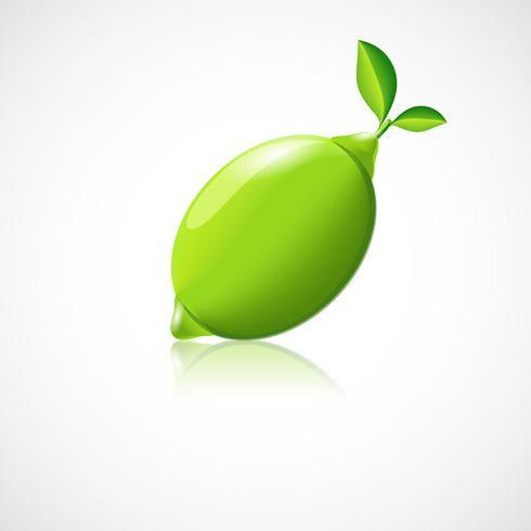 Icône de fruit de citron vert vecteur