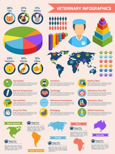 Set d'infographie vétérinaire vecteur
