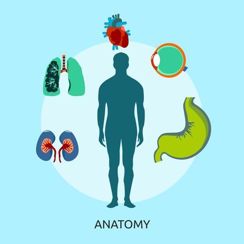 Anatomie Illustration conceptuelle Design vecteur