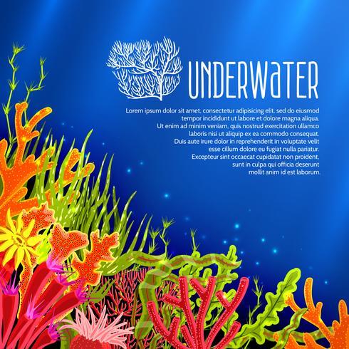 Affiche de coraux sous-marins vecteur