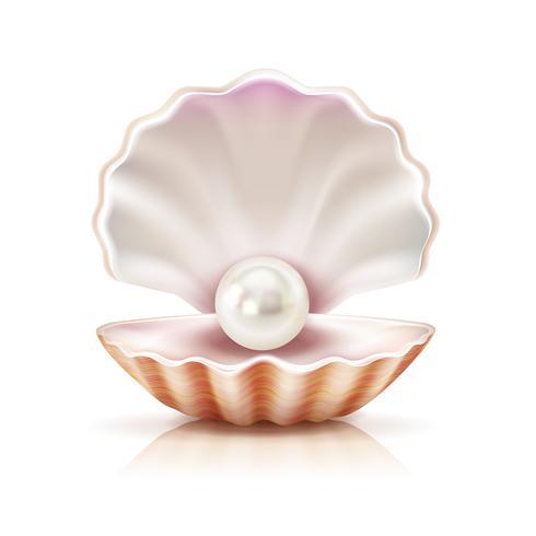 Coquille perle réaliste Image isolée vecteur