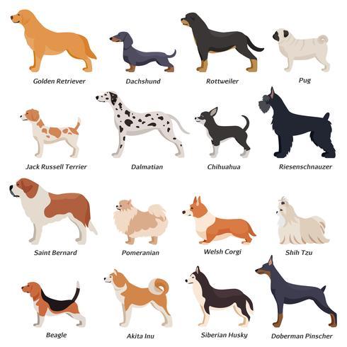 jeu d'icônes de chiens de profil vecteur