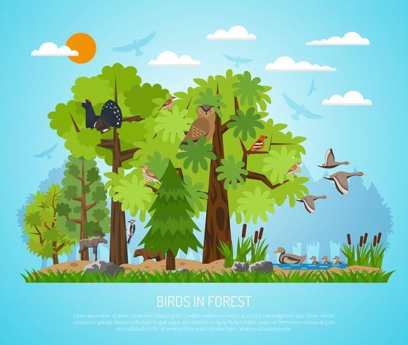 Affiche d'oiseaux en forêt vecteur