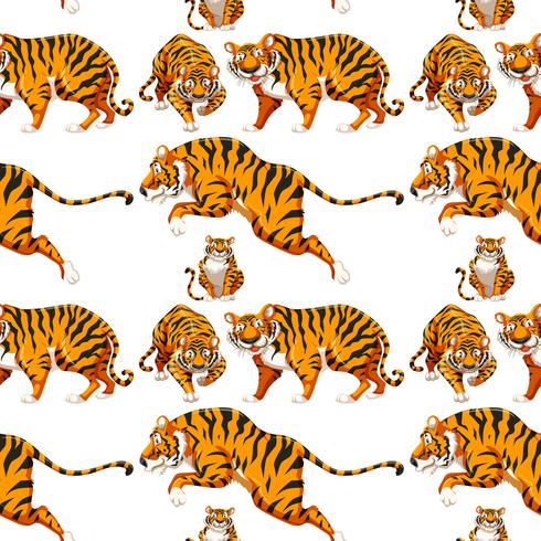 Fond de tigre multiple sans soudure vecteur