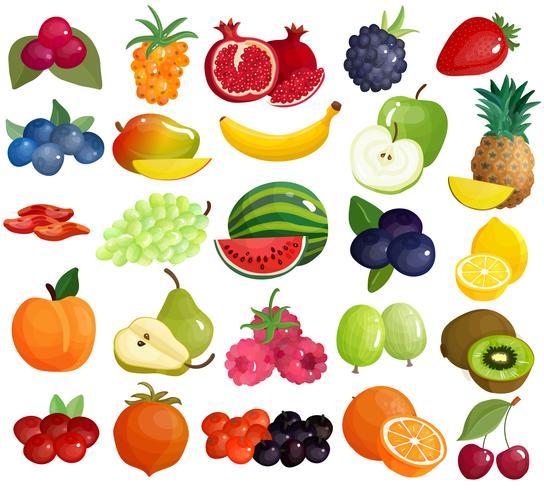 Fruits baies Collection d'icônes colorées vecteur