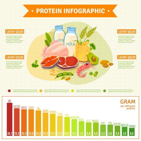 Affiche plat d'infographie de nourriture saine de protéine vecteur