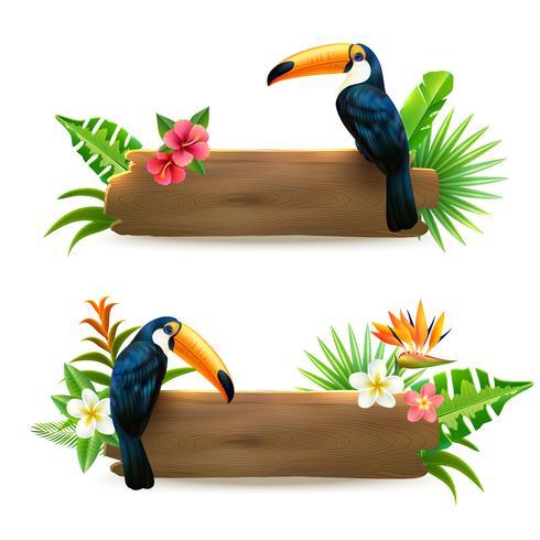 Toucan 2 bannières de forêt tropicale humide vecteur